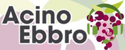 Acino Ebbro Food&Wine